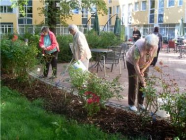 Hilfe und Erfahrung bei der Gartenarbeit wird gerne angenommen