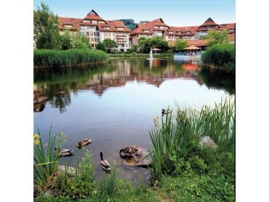 Das Augustinum Freiburg befindet sich am Fuße des Schwarzwaldes, inmitten einer wundersch&ouml...