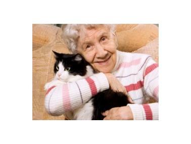 Ziel und Aufgabe  unseres Pflegeteams ist die Pflege und hauswirtschaftliche Versorgung pflegebed&uu...