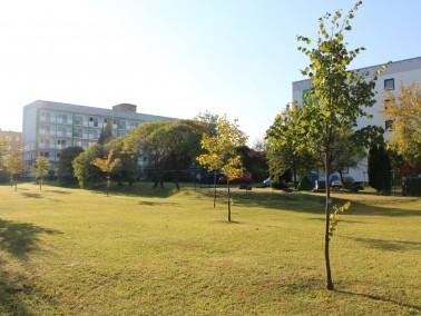 Die Wohnungen liegen in einem ruhigen Umfeld und eignen sich ideal für Senioren und Rollstuhlfa...