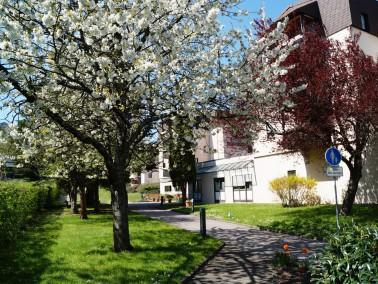 Das DRK Murgtal-Wohnstift liegt ruhig am Rande des alten Stadtkerns in Gernsbach. Eine großer ...