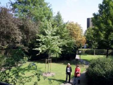 Das Pflegezentrum liegt in unmittelbarer Nachbarschaft zum Diakoniekrankenhaus Henriettenstiftung zw...