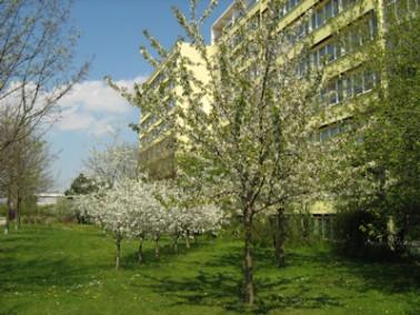 Der jüngst sanierte und modernisierte Senioren-Wohnpark Leipzig - Am Kirschberg bietet mit seinem he...