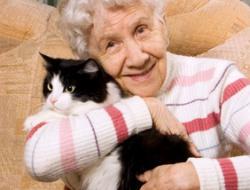 examinierte Pflegekraft (m/w) für leichte Tätigkeiten
